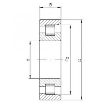 ISO NF224 cylindrical roller bearings