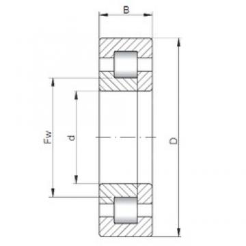 ISO NUP2312 cylindrical roller bearings