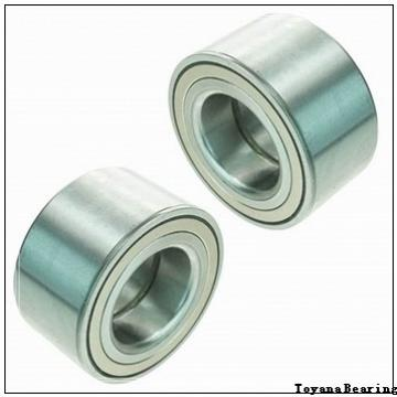 Toyana GE 100 XES-2RS plain bearings