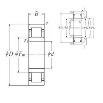 NSK NU1005 cylindrical roller bearings